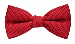 Polyester Pre-Tied Red Bow Tie with Check Pattern